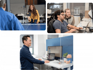 Collage of team members